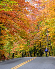 fall_bike_ride