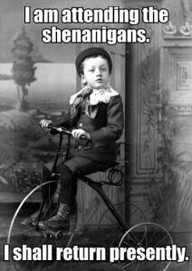 bike shenanigans